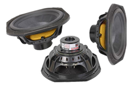 Replacement Subwoofers