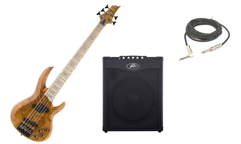 """ESP LTD RB Series RB-1005BM Solid Burled Maple Top 5 String Maple Fingerboard Honey Natural Electric Bass Guitar with Peavey MAX 115 Combo Amp & 1/4"""" Cable"""